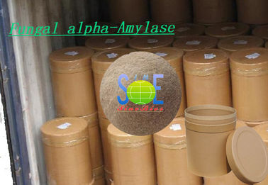 Food Grade Fungal Alpha Amylase Enzyme 50,000U/G for Baking SINOzym-FAA50BA
